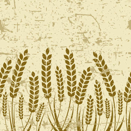 wheat harvest: Vector seamless horizontal old grunge background with ripe ear of wheat. Abstract concept for organic products, harvest, grain, bakery, healthy food. Illustration