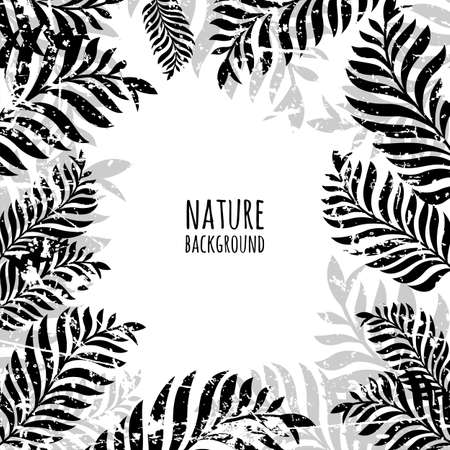 Vector hand drawn palm tree leaves, grunge background. Abstract black and white nature old frame. Illustration
