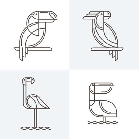 flamenco ave: Conjunto de logotipo de la línea de arte del vector con las aves exóticas. Esquema ilustraciones de tucán, loro cacatúa, flamenco y el pelícano. iconos y elementos de diseño de moda.