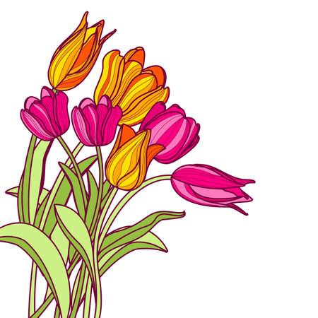 dessin fleur: Bouquet de dessiné à la main des fleurs de tulipes roses et jaunes, isolé sur fond blanc. Vecteur printemps floral carte de voeux ou bannière fond. Illustration
