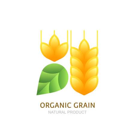 produits c�r�aliers: ic�ne de grain de bl� biologique, l'�tiquette des �l�ments de conception. C�r�ales et feuille verte. Concept pour les produits biologiques, la r�colte, les c�r�ales, la boulangerie, de la nourriture saine.