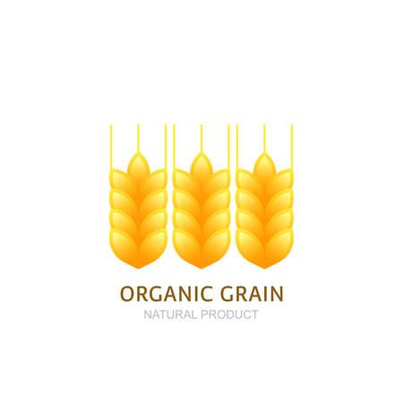 produits céréaliers: Blé oreilles icône ou l'étiquette des éléments de conception. Concept pour les produits biologiques, la récolte, les céréales, la boulangerie. symbole de la nourriture biologique et saine.