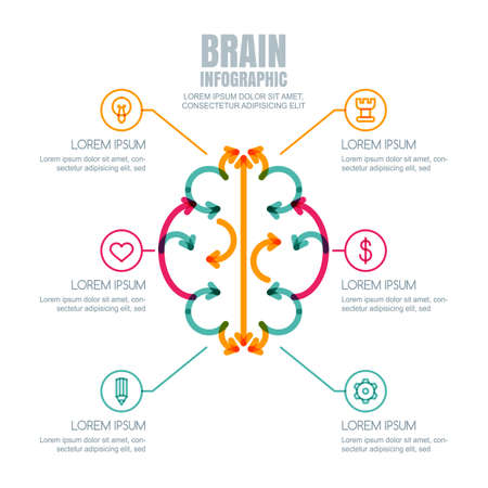 innovation concept: Vector brain infographics design and icons set. Brain made from colorful arrows, isolated on white background. Concept for business, brainstorming, high technology, development, innovation, creativity