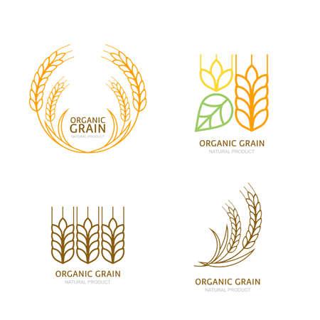 wheat grain: Set of organic wheat grain outline icons. Illustration