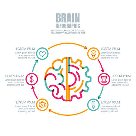 Brain and gear cog,  isolated on white background. Vector infographics, flat design template. Concept for business, brainstorming, high technology, development, innovation, creativity