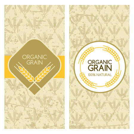wheat harvest: Set of vector grunge backgrounds for banner, label, package template. Wheat grain seamless pattern. Concept for organic products, harvest and farming, grain, bakery, healthy food. Illustration