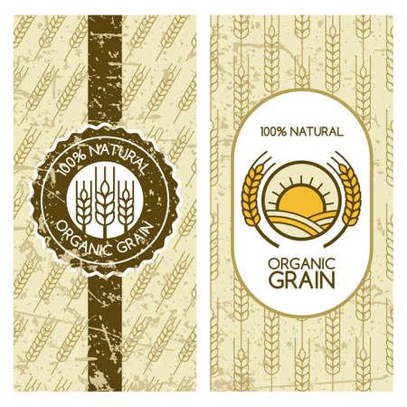 produits céréaliers: Ensemble de milieux de vecteur pour l'étiquette, l'emballage, la bannière. motif de grunge transparente avec le grain de blé. Concept pour les produits biologiques, la récolte et l'élevage, les céréales, la boulangerie, de la nourriture saine. Illustration