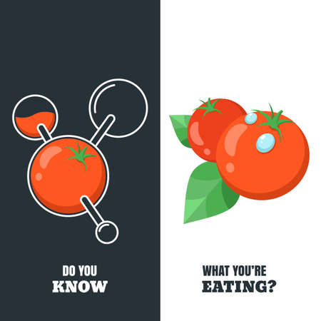 toxicant: Healthy and gmo food concept. Vector illustration of organic tomatoes and tomato with pesticides and chemicals. Farming and agriculture vegetables icons. Do you know what youre eating.