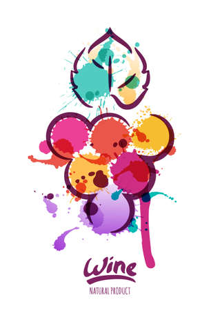 Vector watercolor illustration of colorful grapes vine. Abstract watercolor background with grape berries. Design concept for wine label, wine list, menu, alcohol drinks package.