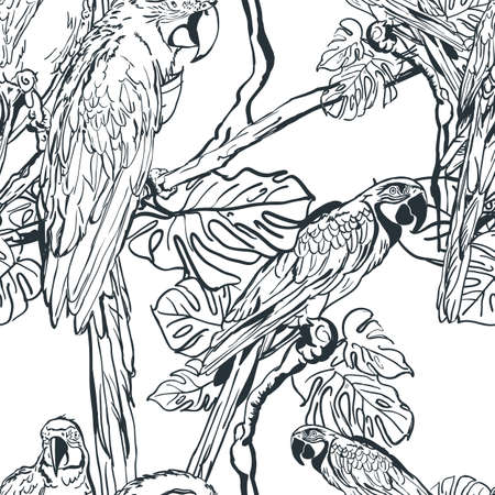 tropical tree: Vector seamless pattern with tropical parrot birds on tree. Hand drawn black and white illustration of jungle. Background with parrots. Design for fashion textile summer print or wrapping.