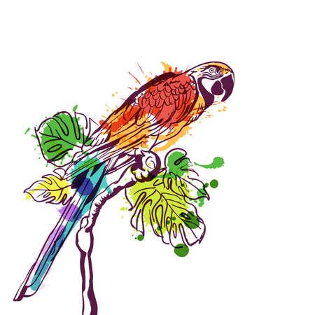 animaux du zoo: Vector illustration main aquarelle dessinée de perroquet tropical oiseau. perroquet coloré isolé sur la branche avec des feuilles de palmiers verts. élément de design pour l'impression de la mode, l'étiquette, l'emballage, fond. Illustration