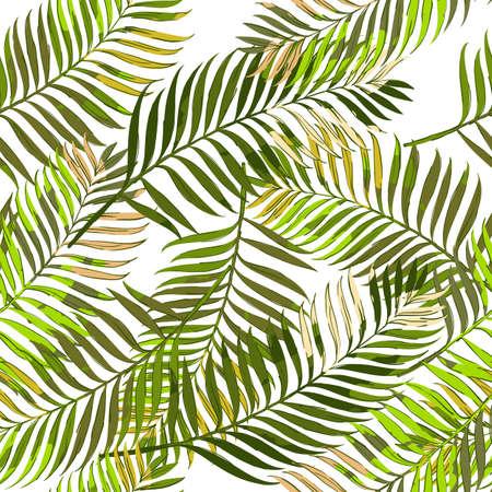 Vector patrón transparente de verano con hojas de palma. Dibujado a mano hojas de palma tropical de fondo. Diseño para la impresión del verano de la materia textil de la manera, papel de embalaje, fondos de la tela. Ilustración de vector