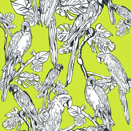 loros verdes: vector sin patrón con aves loro. Dibujado a mano ilustración de la selva. loros lineales blancas sobre fondo verde. Diseño de la impresión del verano de moda textil o envoltura.