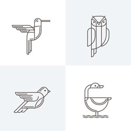 line art: Set of vector line art  with birds. Outline illustrations of hummingbird, owl, pigeon and swan. Trendy icons and design elements.