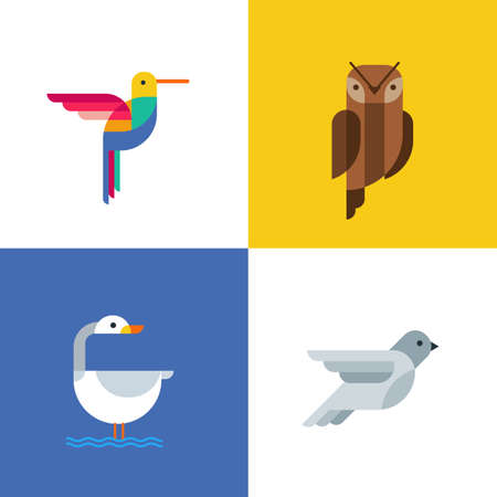 pigeon owl: Colorful birds flat  icons. Set of vector colorful birds illustration of hummingbird, owl, pigeon and swan. Isolated design elements and backgrounds.