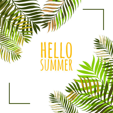 Vector frame with coconut palm leaves on white background. Hello summer background. Floral banner or poster design template with tropical green leaves. Illustration