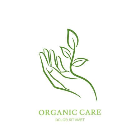 Womens hand with green plant and leaves. Vector  , label, emblem design elements. Abstract concept for beauty salon, manicure, cosmetic, organic care and spa. Female elegant hand silhouette.