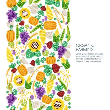 produits céréaliers: Vector seamless background avec des légumes dessinés à la main et les grains de céréales icônes. Automne récolte illustration. Les éléments de conception pour l'agriculture, la récolte, les jardins, la ferme et l'agriculture des produits biologiques.