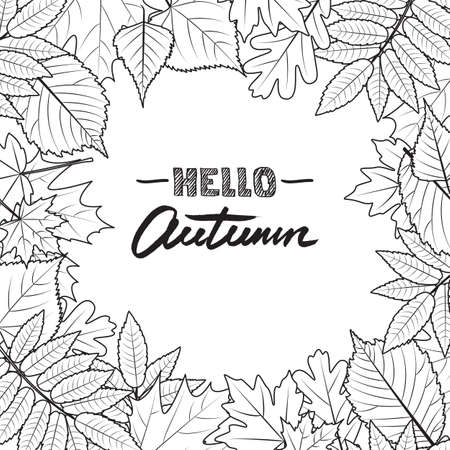 fall leaves on white: Vector square frame with hand drawn autumn leaves. Black and white fall background. Design concept for banner, invitation card, poster.