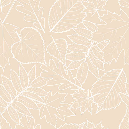 beige background: Light beige background with outline hand drawn autumn leaves. Vector fall seamless pattern. Design concept for fabric, textile print, wrapping paper or web backgrounds.