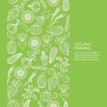 Vector seamless green background with vegetables and cereal grains icons. Autumn harvest line illustration. Design elements for agriculture, harvesting, gardens, farm and farming organic products.