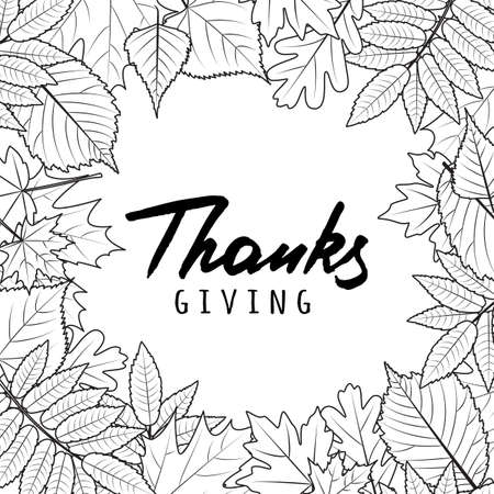 fall leaves on white: Thanksgiving holiday banner with linear black and white autumn leaves and hand drawn calligraphy lettering. Vector fall poster background. Design for invitation, flyer, greeting card and prints. Illustration