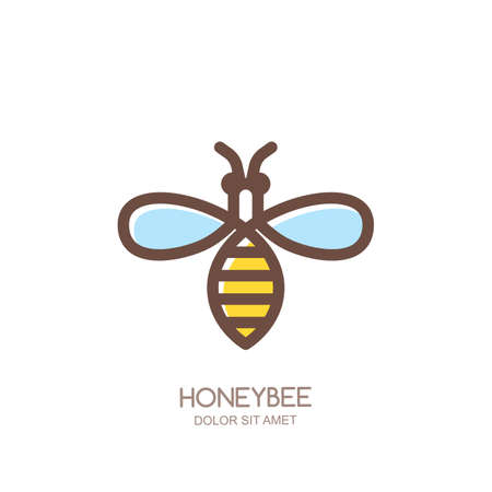 insect flies: Outline honeybee logo, emblem or icon. Linear bee isolated on white background. Concept for organic honey package design.