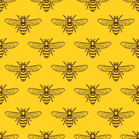 insect flies: Yellow pattern with outline bee. Organic honey background. Design concept for honey package design, label, wrapping, fashion prints. Illustration