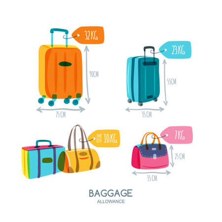 baggage: Baggage allowance isolated vector icons. Multicolor luggage, suitcase, bags with tags and labels. Checked in baggage and hand luggage for traveling by aircraft. Travel and tourism concept.