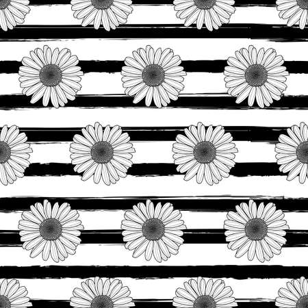 daisy wheel: Vector floral seamless striped pattern. Black and white background with outline hand drawn chamomile flowers. Spring design for fabric, textile print, wrapping paper or web backgrounds.