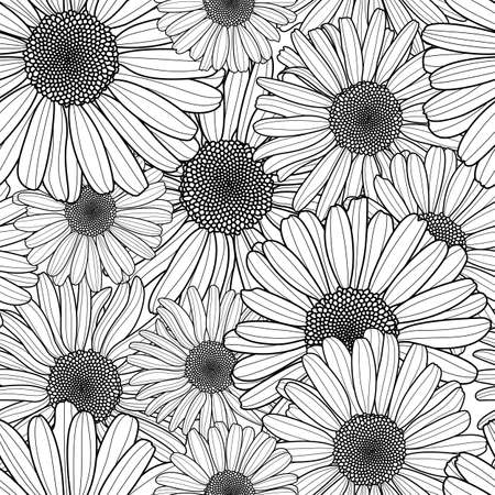 hand outline: Vector floral seamless pattern. Black and white background with outline hand drawn chamomile flowers. Spring design for fabric, textile print, wrapping paper or web backgrounds.