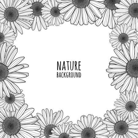 Vector Floral Nahtlose Muster. Schwarz-Weiß-Hintergrund Mit Umriss ...