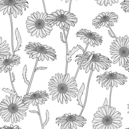 Vector floral seamless pattern. Black and white background with hand drawn sketched chamomile flowers. Spring design for fabric, textile print, wrapping paper or web backgrounds.