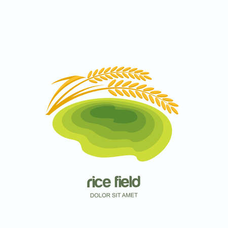 grain fields: Vector logo, label, emblem with green rice terrace field. Farm landscape and yellow rice grains, isolated illustration. Concept for asian agriculture, organic cereal products.
