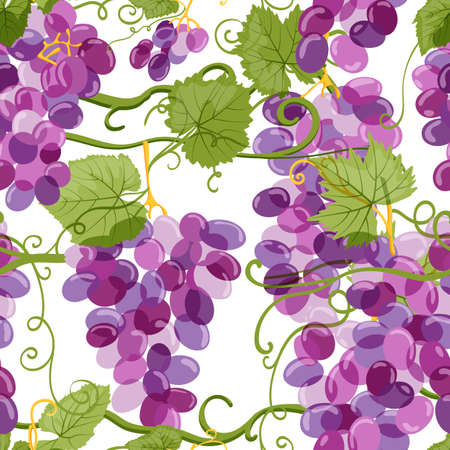 Vector grapes seamless pattern. Vineyard hand drawn illustration on white background. Fresh hand drawn grape with green leaves. Design elements for wine label or packaging.