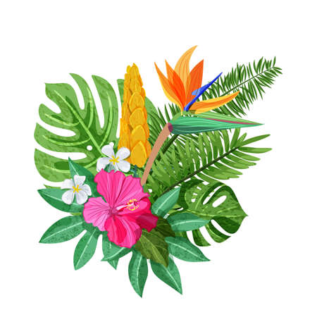 Tropical bouquet with exotic flowers hibiscus, plumeria, strelitzia and palm, monstera leaves. Vector isolated illustration. Summer or spring design elements for fashion prints and greeting cards.