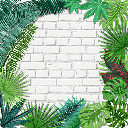 Vector white brick wall and green tropical palm leaves. Summer or spring trendy interior background with place for text. Nature square frame and old architecture elements.
