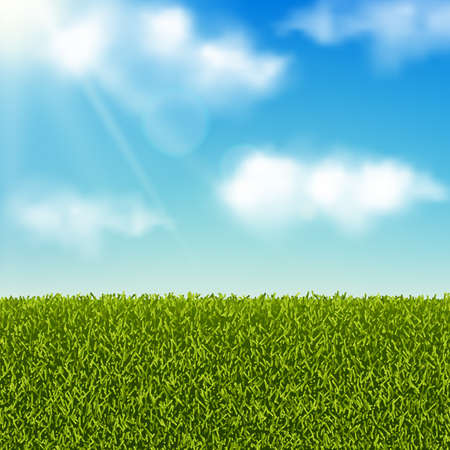 Vector realistic landscape. Green grass field or meadow and blue sky with clouds. Summer or spring background. Ilustracja