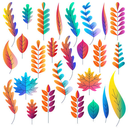 Vector set of color gradients autumn leaves. Fantasy plants icons and design elements. Fall cartoon illustration.
