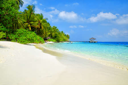 Beautiful white sand tropical beach landscape. Maldives island, Indian Ocean.