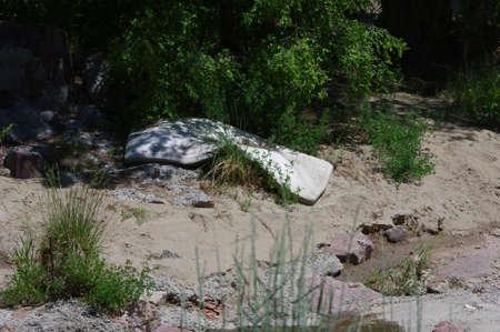 trashed: mattress dumped by creek
