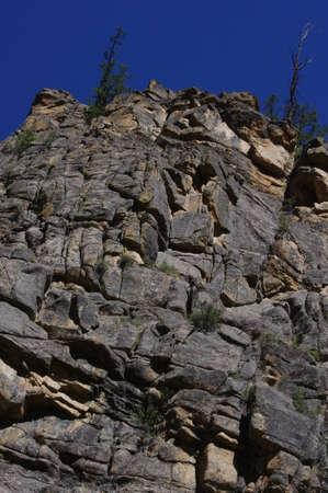 towering: acantilado de roca con altos pinos