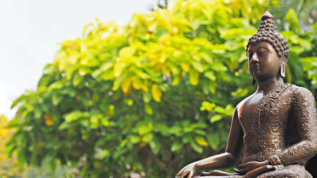 Buddha image in peaceful garden environment.