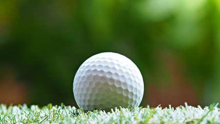 Golf ball on green grass. Golf sports background.