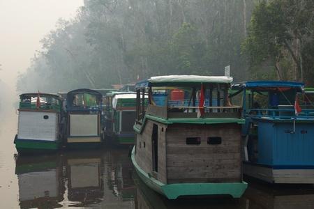 particulates: Cluster of klotoks on Kumai River, Kalimantan, Indonesia