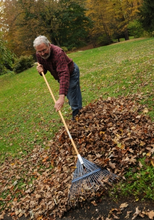 Senior man raking leaves in New England. Stock Photo - 6666659