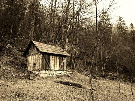 Cabin in wild