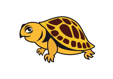 tortuga de caricatura: vector de tortuga joven. tortuga personaje de dibujos animados. Ilustraci�n de una hermosa tortuga. tortuga del vector en un fondo blanco