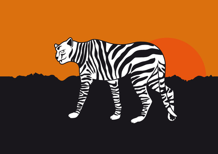 feline: Funny Cheetah Cartoon. Black-and-white stripes. Zebra Striped Feline. Feline dressed as a zebra
