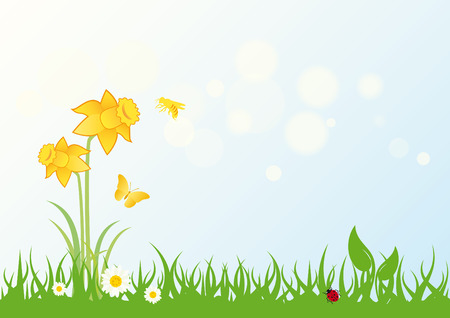Spring landscape vector. Grass with daffodils. Vector illustration fresh nature